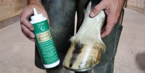Hoof Topical and Disinfectant