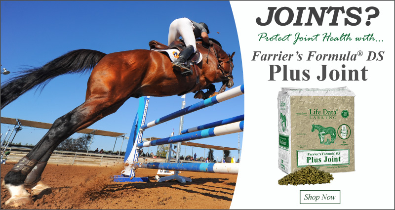 Farrier's Formula DS Plus Joint