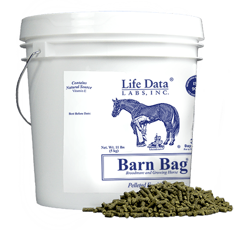 Feed Balancer for Broodmares